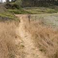 The California Coastal Trail passes through here.- Lagoon Creek Beach