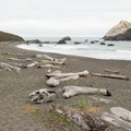 Large pieces of driftwood sitting above the tide line. False Klamath Rock is in the distance.- Lagoon Creek Beach