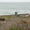 A couple enjoys a traveling break at Lagoon Creek Beach.- Lagoon Creek Beach