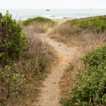 Short trail leading to the beach.- Pelican State Beach