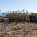 A couple of disc golf baskets are set up nearby.- McVay Rock Beach