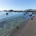 A small sheltered cove receives very small, lapping waves.- McVay Rock Beach
