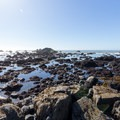 McVay Rock Beach is home to an expanse of tide pools extending far out.- McVay Rock Beach