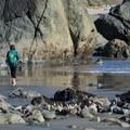 A woman strolls along Lone Ranch Beach.- Lone Ranch Beach + Picnic Area