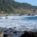 This long arcing beach is backed by forests of conifers.- Lone Ranch Beach + Picnic Area