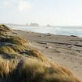 The beach stretches far southward toward a set of seastacks.- Pistol River South Beach