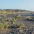 An expanse of driftwood, grasses, and sand where the Pistol River occasionally fills up.- Pistol River South Beach