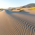 Late day sunlight allows visitors to see the textures of the dunes.- Pistol River Middle Beach