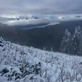Winter wonderland above 3,000 feet.- Augspurger Mountain