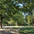 Miles of closed roadways and walking paths are used by cyclists, walkers and runners alike.- Prospect Park