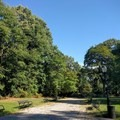 You could spend months exploring every path in the park.- Prospect Park