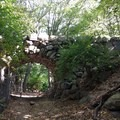 You'll likely find solitude on the trails that wind through the forest.- Prospect Park