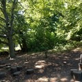 A portion of the Natural Play Area.- Prospect Park