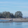 Nice day at Chesterman North, Frank Island in the background.- Chesterman Beach