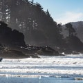 A surfer heads out into the waves at Chesterman North.- Chesterman Beach