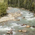 The Animas River near Needleton, the access point for the Chicago Basin via the Needle Creek Trail.- Chicago Basin