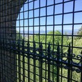 Viewing platform at the Volunteer Park water tower.- Volunteer Park