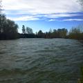 Yakima river flowing along the edge of the park.- Irene Rinehart Riverfront Park