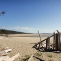 Makeshift driftwood structure on Combers Beach.- Combers Beach