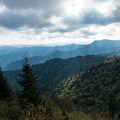 View along the Boulevard Trail.- Mount LeConte via Trillium Gap + Boulevard Trail