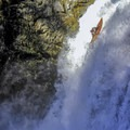 The author on the first documented Descent.- Tamolitch Falls