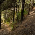 One of several switchbacks.- China Beach