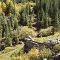 Old foundations to a mining cabin in Cunningham Gulch.- Cunningham Gulch