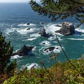 Waves crash against sea stacks in the open ocean.- North Island Viewpoint