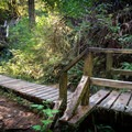 Trail to Schooner Cove.- Schooner Cove