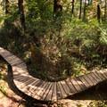 The narrow boardwalk trail down to Schooner Cove.- Schooner Cove