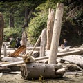 Relaxing among the driftwood at Schooner Cove.- Schooner Cove