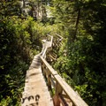 There are 123 stairs on the way down to Halfmoon Bay.- Halfmoon Bay
