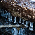 Ice on the streams along the trail in early October.- Lake Hope