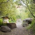 The Jud Wiebe Trailhead near Cornet Creek Falls.- Cornet Creek Falls