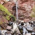 Cornet Creek Falls.- Cornet Creek Falls