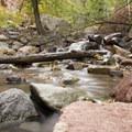 Pools along Cornet Creek near Cornet Creek Falls.- Cornet Creek Falls