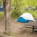 Typical campsite at Town Park Campground.- Town Park Campground