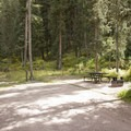 Typical campsite at Cayton Campground.- Cayton Campground