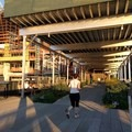 Runners, walkers, and strollers enjoy using this path that overlooks the city.- The High Line