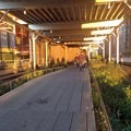 The path surface varies from section to section.- The High Line