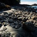 To the south the shoreline is rocky and provides for some great tidepools.- Willowbrae Trail to Florencia Bay