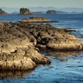 Rugged coastline on the Wild Pacific Trail.- Wild Pacific Trail, Lighthouse Loop