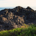 Wild Pacific Trail.- Wild Pacific Trail, Lighthouse Loop