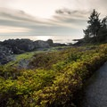 The trail is wide, gravel, and off-road wheelchair and stroller friendly.- Wild Pacific Trail, Lighthouse Loop
