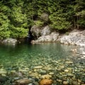 Cooling off in the 30 Foot Pool.- 30 Foot Pool, Lynn Canyon Park