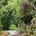 Pathways through the garden.- Finca Dracula