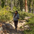 Hiking through the forest.- Bear Basin + Seven Up Pass