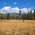 The large meadow before Bear Basin.- Bear Basin + Seven Up Pass