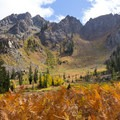 Golden ferns with a background of changing fall colors.- Bear Basin + Seven Up Pass