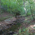 Side creek along the White Trail in Sweetwater Creek State Park.- Sweetwater Creek State Park